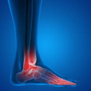 Orthopaedic Continuing Medical Education