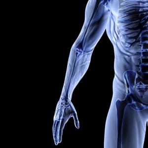 Orthopaedics Education