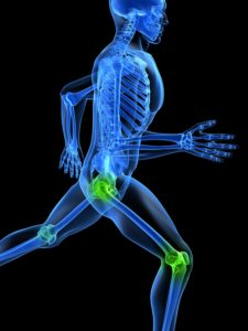 Orthopedic Courses