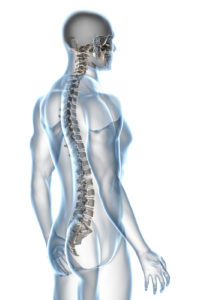 Spine Surgeon Education