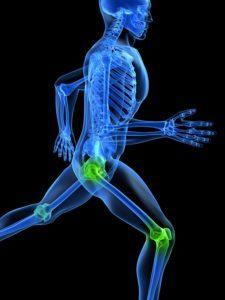Orthopedic Conferences Florida