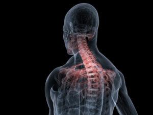 Orthopaedic Education